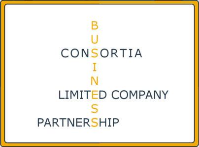 Limited Company Consortia